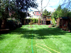 Kensington Lawn Suppliers