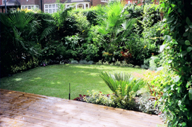 Garden Lawns London