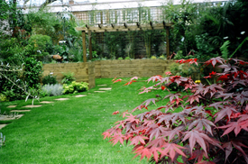 Virginia Water Lawn Suppliers