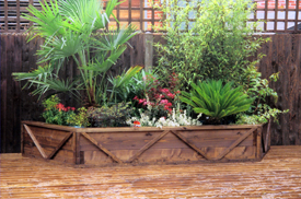 timber raised plant beds